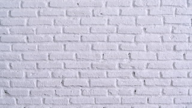 vídeos de stock e filmes b-roll de white brick wall background - muro circundante