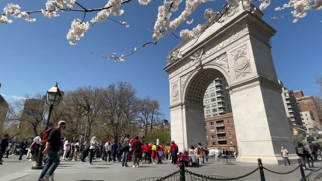 white cherry tree blossoms blow in the breeze as people gather near the washington arch in washington square park in greenwich village on april 07,... - arch stock videos & royalty-free footage