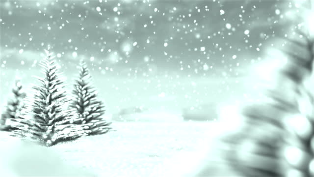 white christmas winter background - fir tree stock videos and b-roll footage