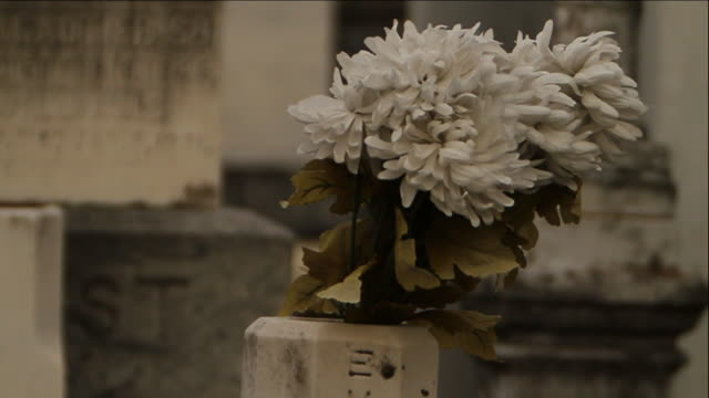 White chrysanthemums in stone receptacle tombs vaults SOFT FOCUS BG Funeral death graveyard grave burial mourning
