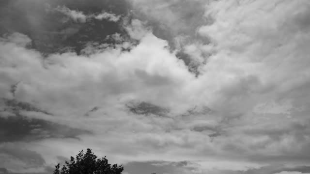 white clouds translation floated black & white 4k dci - 2019 stock videos & royalty-free footage