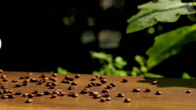 White Coffee Cup and Roasted Coffee Beans on wooden table with sunlight, panning and dolly shot