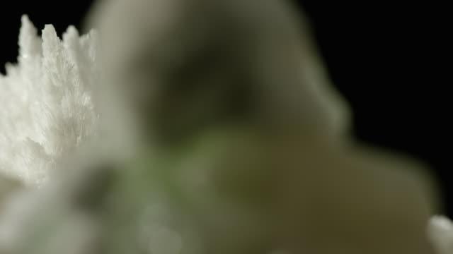 white crystal black background - gemology stock videos & royalty-free footage