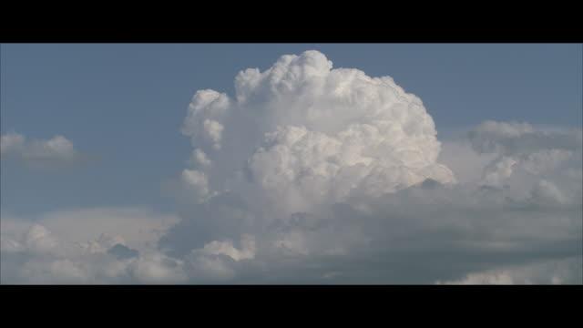 ws, t/l, white cumulus clouds against blue sky - 積雲点の映像素材/bロール