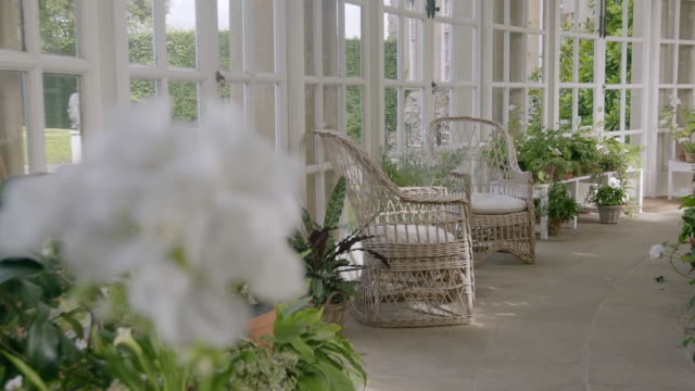 MS R/F White flowers and armchairs in Ditchley House / Charlbury, Oxfordshire, England, United Kingdom