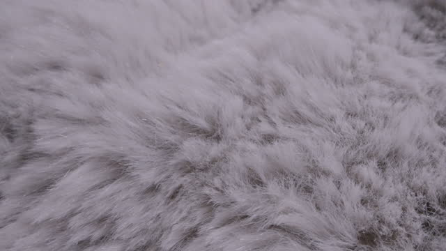 white fur dolly shot - softness stock videos & royalty-free footage
