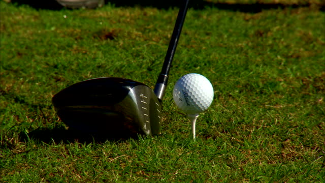 white golf ball on white tee in green grass of golf course black silver wood club moving toward ball driving forward hitting ball out of frame... - golf swing on white stock videos & royalty-free footage