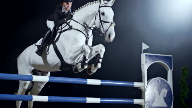 SLO MO White horse and it's female rider jumping a rail