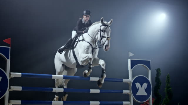 SLO MO White horse and it's rider jumping over four rails
