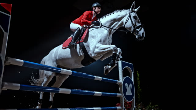 SPEED RAMP White horse jumping a rail with his female rider