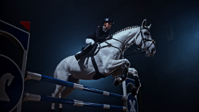 slo mo white horse jumping over a rail with his rider - horseback riding stock videos & royalty-free footage