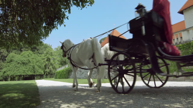 ds white horses pulling a carriage along castle - top hat stock videos & royalty-free footage