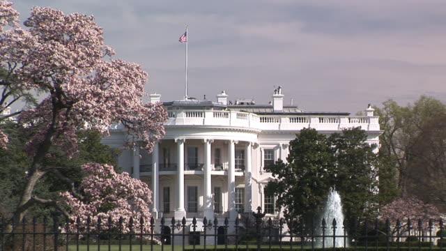 stockvideo's en b-roll-footage met ms, white house, cherry blossom in foreground, washington dc, washington, usa - tuinhek