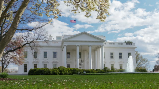 white house north facade lawn washington, dc - la casa bianca washington dc video stock e b–roll