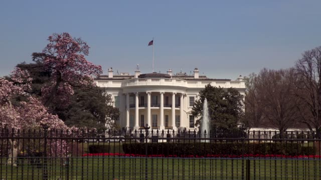 white house south lawn washington, dc in 4k/uhd - us president stock videos and b-roll footage