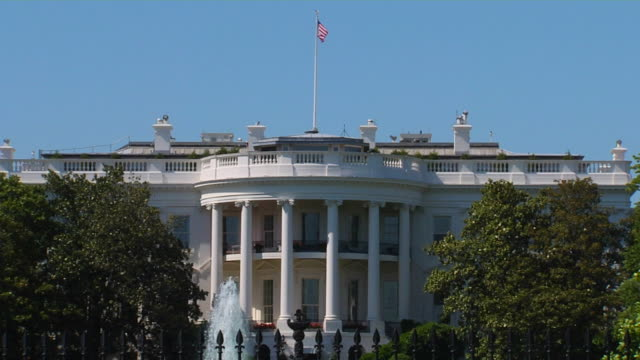 hd white house_1 (1080/24p) - branch stock videos & royalty-free footage