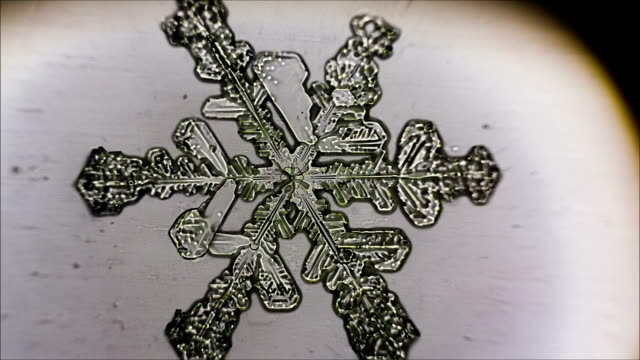 White ice crystals in the form of snowflakes.