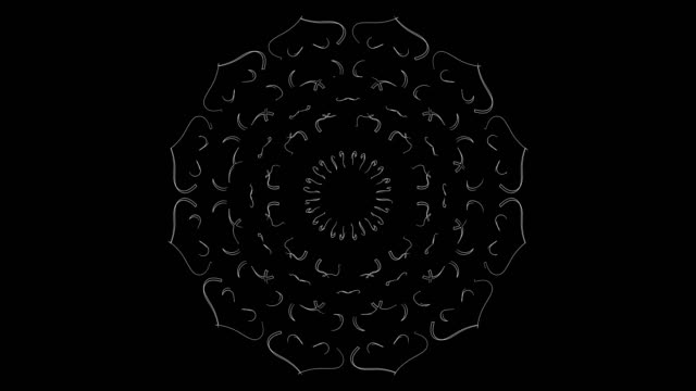 stockvideo's en b-roll-footage met witte lijn kunst voor rose - loop elementen