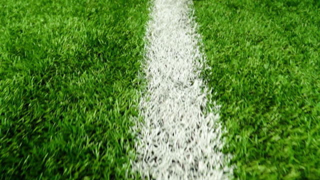 white line of the soccer field - prato rasato video stock e b–roll