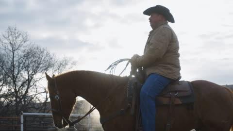 vita medelålders cowboy sitter på sin häst - nötkreatur bildbanksvideor och videomaterial från bakom kulisserna