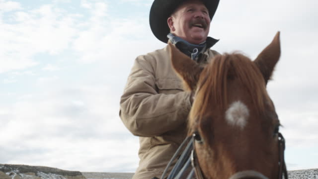 white middle-aged cowboy smiling - bovino video stock e b–roll