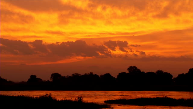 ws white nile during sunset / juba/ central equatoria/ south sudan - river nile stock videos & royalty-free footage