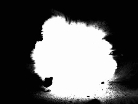 white paint exploding over black background - murmursofearth点の映像素材/bロール