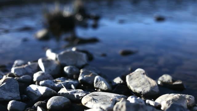 vídeos de stock e filmes b-roll de calhaus branco na borda de fluxo azuis - water's edge