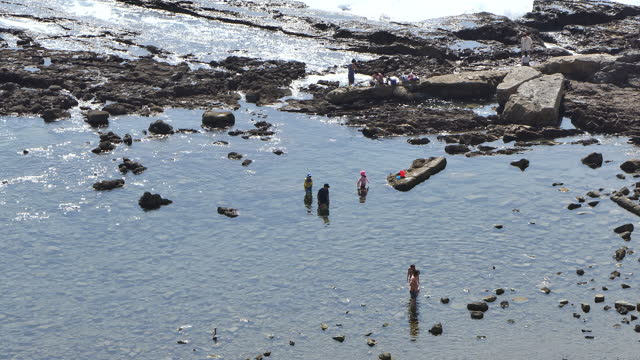 white point beach tide pools in palos verdes peninsula, los angeles, southern california lifestyle, two little children one in pink and one in blue... - palos verdes stock videos & royalty-free footage