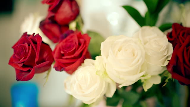 white red rose - blumenbouqet stock-videos und b-roll-filmmaterial