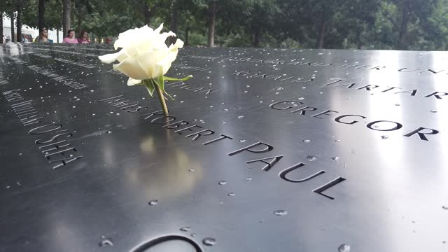 white rose sits on the name of james robert pa in honor of his birthday as rain at the south pool memorial at the national september 11 memorial &... - celebratory event stock videos & royalty-free footage