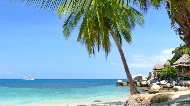 white sand beach auf tropischen inseln in der sommersaison - cay insel stock-videos und b-roll-filmmaterial