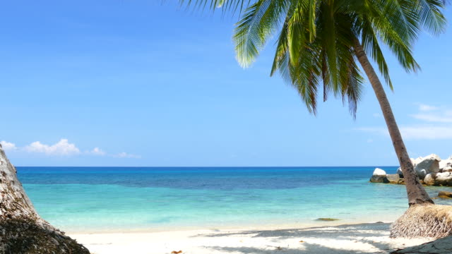 white sand beach on tropical islands in summer season - day stock videos & royalty-free footage