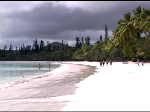 white sand beach - vier tiere stock-videos und b-roll-filmmaterial