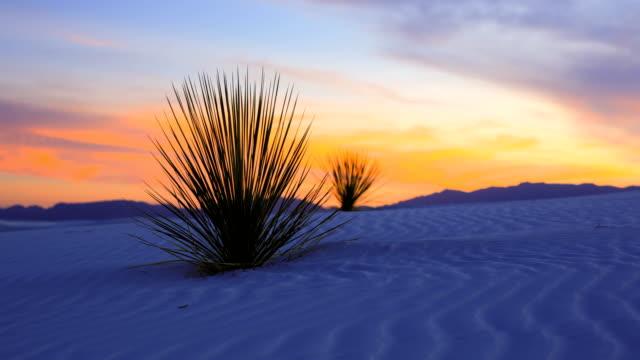 vidéos et rushes de monument national de sable sands blancs, nouveau-mexique - dune de sable