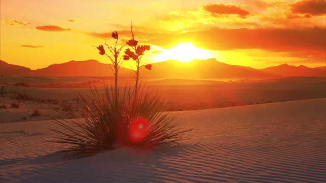 White Sands National Monument Sunset, New Mexico - Timelapse