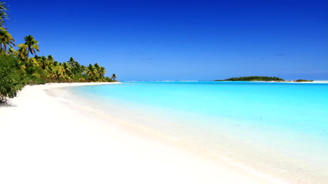 white sandy beach in the tropics - cook islands stock videos & royalty-free footage
