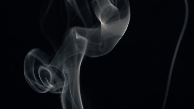 white smoke isolated on black - transparent stock videos & royalty-free footage