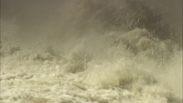 White water churns at the base of the Kapichira Falls.