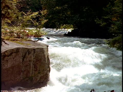 cs, white water rafters paddling through rapids, otter slide, north creek, adirondack state park, new york state, usa  - adirondacks rafting stock videos & royalty-free footage