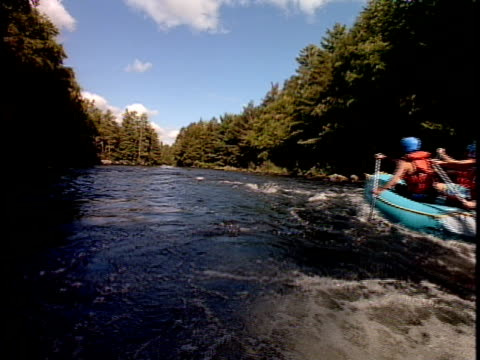 slo mo, ms, white water rafters paddling through rapids, rear view,  otter slide, north creek, adirondack state park, new york state, usa  - rafting stock videos & royalty-free footage