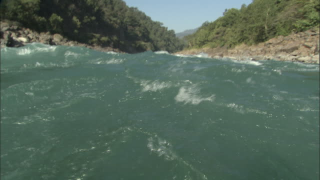 vídeos de stock, filmes e b-roll de white water rafting down river, rishikesh, india available in hd. - rishikesh