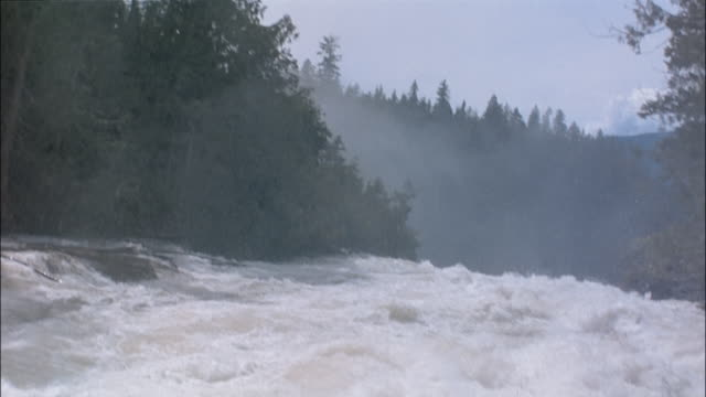 pov white water rafting in rapids - whitewater rafting stock videos & royalty-free footage