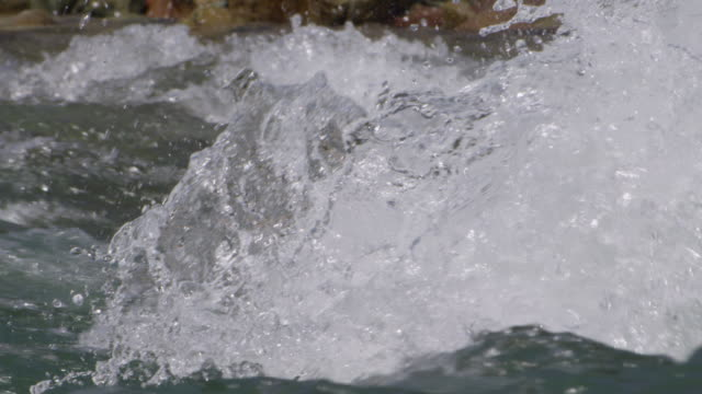 white water splashes from river rapids, glacier national park, usa - wildwasser fluss stock-videos und b-roll-filmmaterial