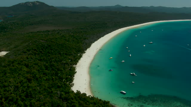 whitehaven beach sunrise aerial whitsundays ocean coral reef - anchored stock videos & royalty-free footage