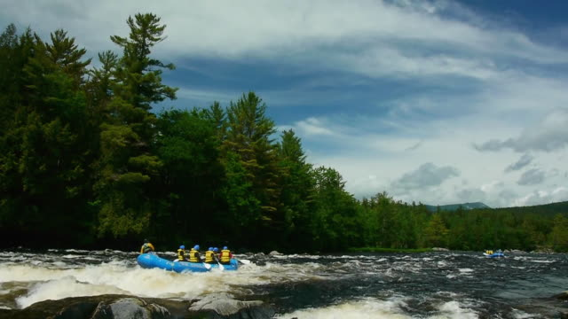 whitewater river rafters paddle through rapids on west branch of penobscot river, maine woods - rafting stock videos & royalty-free footage