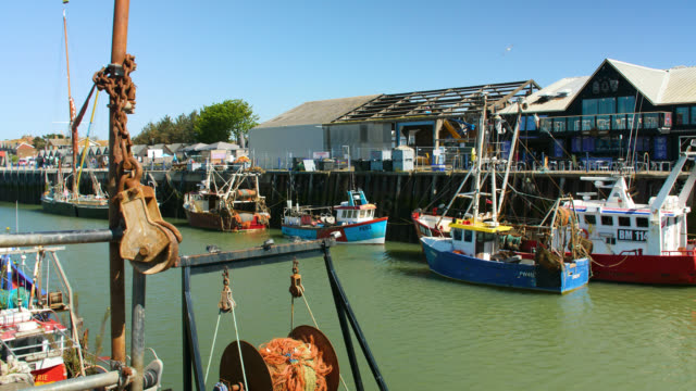 ws whitstable harbour on bright sunny day, uk - anchored stock videos & royalty-free footage