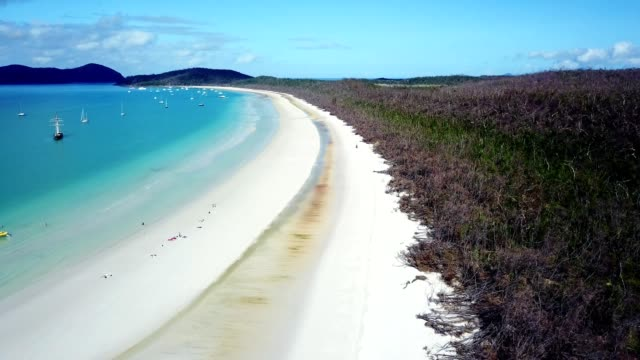 whitsunday beach in australia - perfection stock videos & royalty-free footage