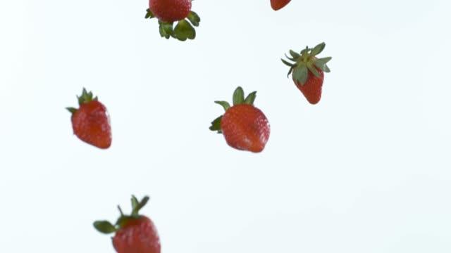 vídeos de stock e filmes b-roll de who needs candy when nature's full of it? - morango