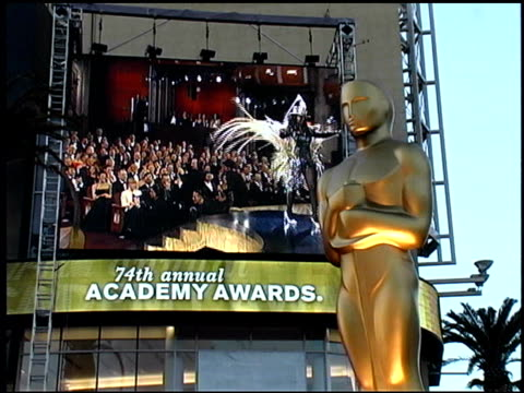 whoopi goldberg at the 2002 academy awards arrivals at kodak theatre in los angeles california on march 24 2002 - whoopi goldberg stock videos & royalty-free footage